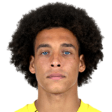 Witsel Axel